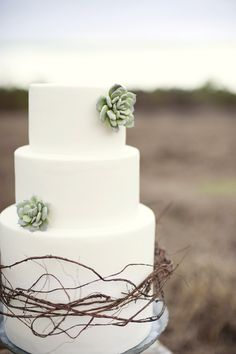 wedding cake with succulent details
