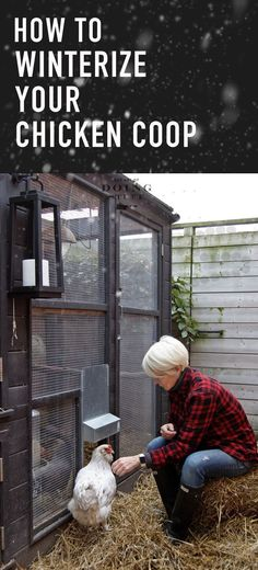 Winterize a chicken coop | Posted by: SurvivalofthePrepped.com #ChickenCoop #ChickenCoopPlans