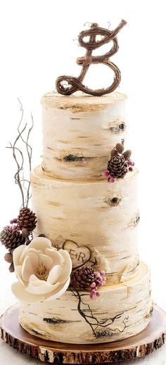 Top 14 Must See Rustic Wedding Ideas ---Birch tree wedding cake on a wooden base for fall or winter weddings, country wedding ideas. Birch Tree Wedding, Wedding Cake Rustic, Tree Wedding Cakes, Winter Wedding Cakes, Wedding Cake Vintage, Country Wedding Cupcakes, Wedding Cake Cupcakes, Spring Wedding, Country Wedding Foods