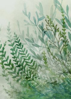 "lesstalkmoreillustration: "" Leslie Evans FERNS AND FOG "" Follow us on Instagram:@Lesstalkmoreillustration"