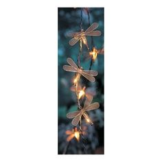 1000 Images About Lighting Sets On Pinterest String