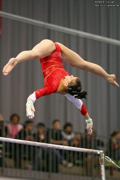 Turnier der Meister 2008