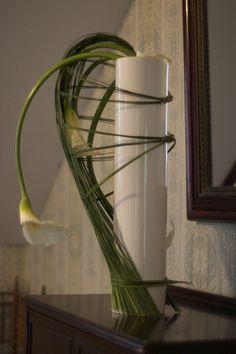 Floral Portfolio | r