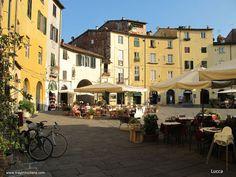 gute Restaurants auf der Piazza von Lucca www.traumtoskana.com