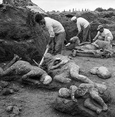 Excavating plaster casts of bodies at Pompeii.