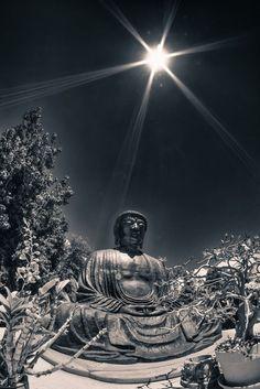 Buddha @ Jodo Missio mother nature moments