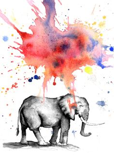 Colorful Elephant Watercolor Colorful eleph