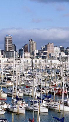 Westhaven-Marina-Yacht-Auckland-North-Island-New-Zealand