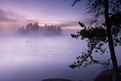 The fog on Sag in the Boundary Waters Canoe Area Wilderness liquefies the purple and pink colors of sunrise. #111026-560  Appeared in Minnesota Public Radio News' Photos of the Week.