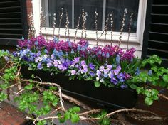 Adorable window box for Spring!