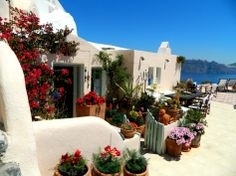 Hotel And Resort, Vintage Wooden Fence Flower Pot White Wall Cat Sculpture Armchairs Wall Spotlight Blue Sky Mountain Table Glass Window: Hotel Review: Aris Caves in Oia, Santorini