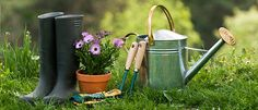 How to prepare your garden for spring.