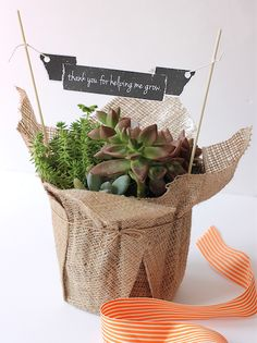Teacher Appreciation/Garden/Plant Gift Ideas - This teacher appreciation printable will look great on a plant gift, whether it is a bought plant or one you have grown yourself. This website just offers the printable but features a bought plant wrapped in hessian/burlap, which is also a good idea to wrap a plant gift.