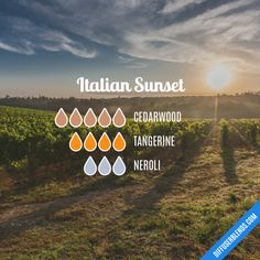 Italian Sunset - Essential Oil Diffuser Blend