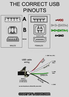 Electronic on camera wire diagram