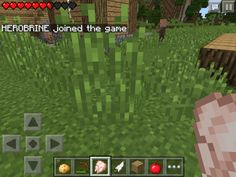 This is a very creepy pin!! Me and my friend Mali were playing MINECRAFT PE and this happened!:0