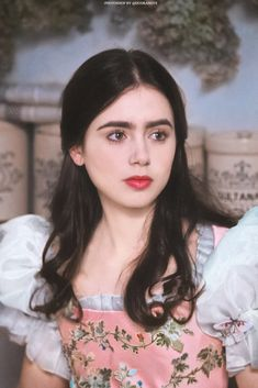 Actresses With Brown Hair, Red Haired Actresses, Brunette Actresses, Female Actresses, Lily Collins Hair, Lily Collins Style, Brunette Blue Eyes, Blond, Prince Charmant