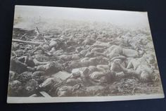 Not the so called 1937 Nanking Massacre, but a photo/postcard showing victims of the Great Kanto Earthquake of 1923