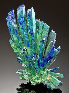 Incredible specimen featuring a dramatic spray of Azurite crystals with ps to Malachite! From Kerrouchene (Kerrouchen), Khénifra Province, Meknès-Tafilalet Region, Morocco. Cool Rocks, Beautiful Rocks, Minerals And Gemstones, Rocks And Minerals, Rock Collection, Mineral Stone, Rocks And Gems, Stones And Crystals, Gem Stones