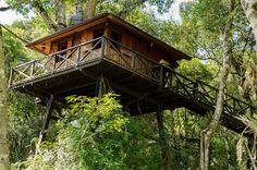 chalé Monte Verde  - Casa na árvore (chalé)