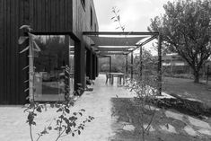 STAM architecten — Woning GOOS Open Plan, Porch, Pergola, Villa, Patio, Nature, House, Outdoor, Kitchen