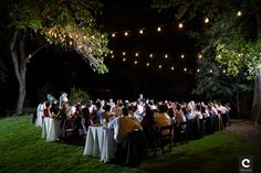 Wedding at Umlauf Sculpture Garden with festoon lighting. Photo by Cory Ryan Photography. http://www.coryryan.com/