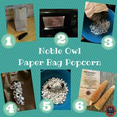 Noble Owl Paper Bag Popcorn, it's made in the microwave!