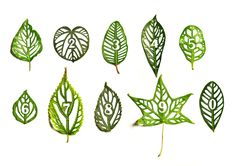 Intricately Designed Cut Leaf Typography