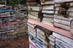 jardin de la connaissance libros viajos
