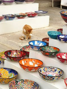 Turkish plates & cat :)