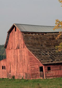 Pinkish Old Barn ... needs a roof pretty bad