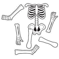 Results for skeleton