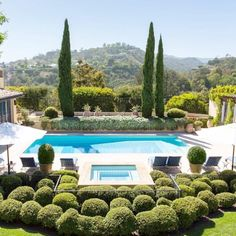 Garden and pool. Love!
