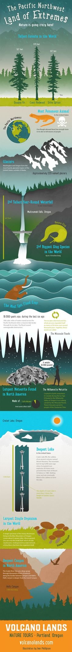 Infographic - Extremes of Nature in the Pacific Northwest: http://www.volcanolands.com/infographic-the-pacific-northwest-is-a-land-of-extremes/