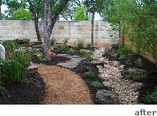 THIS ONE!! xeriscape