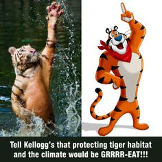 SIGN this petition asking Kellogg's to make a commitment to deforestation-free palm oil: http://www.forestheroes.org/be_a_forest_hero_kellogg_s. We think it's what Tony the Tiger would want, considering there are only 400 Sumatran tigers left in the wild and there are many wildlife species threatened by climate change.