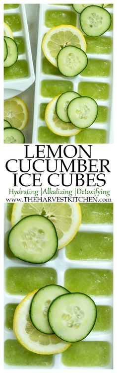 Make Cucumber Detox Water by adding these Hydrating Lemon Cucumber Ice Cubes to . - Make Cucumber Detox Water by adding these Hydrating Lemon Cucumber Ice Cubes to your water daily fo - Detox Drinks, Healthy Drinks, Healthy Snacks, Healthy Eating, Healthy Recipes, Detox Juices, Easy Recipes, Health Tips, Health And Wellness