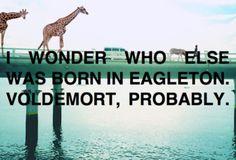 I wonder who else was born in Eagleton. Voldemort, probably. (parks and rec)