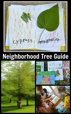 Neighborhood Tree Guide Kids- make a neighborhood tree guide and teach your kids to identify common trees, native to their local community. Get outside and learn about your environment with this hands-on nature project. Nature Activities, Educational Activities, Learning Activities, Outdoor Fun For Kids, Outdoor Activities For Kids, Kids Around The World, And So It Begins, World Geography, Lessons For Kids