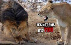 It's not PMS!!