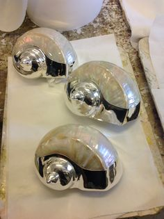 Beautiful silver shells
