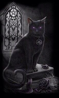 Witch Familiar
