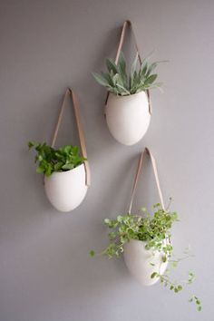 Wall Option hanging succulents straight across the wall in a horizontal line) - white ceramic + leather strap and light and polish to a dark wall - plants add element of movement and softness to a space wall decor Unique Air Plant Vessels Hanging Succulents, Hanging Planters, Planter Pots, Planter Ideas, Ceramic Planters, Hanging Herbs, Diy Hanging, Succulent Planters, Hanging Gardens