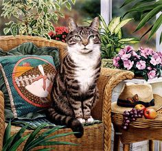 "levkonoe: Коту тоже неплохо. Geoffrey Tristram. ""Hemmingway"""