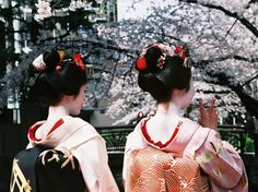 4 Important laws to know when travelling to Japan