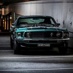 Ford Mustangs : Photo