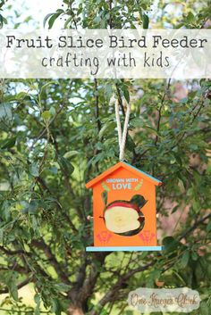 Fruit Slice Bird Feeder- Fun Summer crafting with kids with We Made It by Jennifer Garner Craft Kits- OneKriegerChick.com