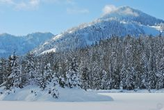 Gold Creek Pond is an easy snowshoeing adventure with outstanding views near Seattle.