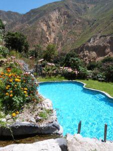 Oasis in Colca Canyon, Peru http://incatrail.info #incatrail #machupicchu #peru