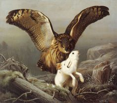 Eagle Owl Attacking a Hare by von Wright. Bird Art Repro choose Canvas or Paper - Eagle Art - Ideas of Eagle Art - Eagle Owl Attacking a Hare by von Wright. Bird Art Repro choose Canvas or Paper Price : Nocturne, Hunting Drawings, Very Nice Pic, Eagle Art, Different Kinds Of Art, Ferdinand, Animal Drawings, Drawing Animals, Bird Art